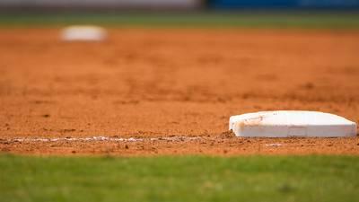 Fast little legs: Russell Terrier Macho declared fastest doggie baserunner at Dodger Stadium